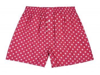 Festive Stars Boxer Shorts