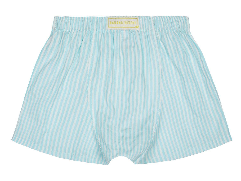 Chaz's Stripe Boxer Shorts back