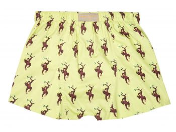 Cheeky Monkey Boxer Shorts back