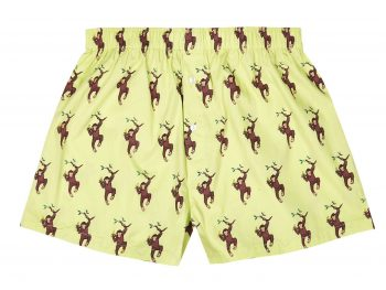 Cheeky Monkey Boxer Shorts