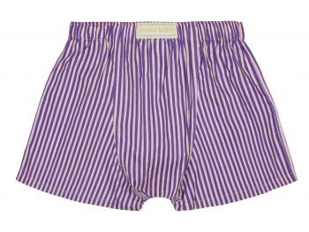 Sam's Stripe Boxer Shorts back