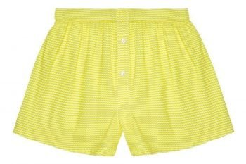 Ziggy Zig Boxer Shorts